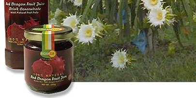 Dragob Fruit jam